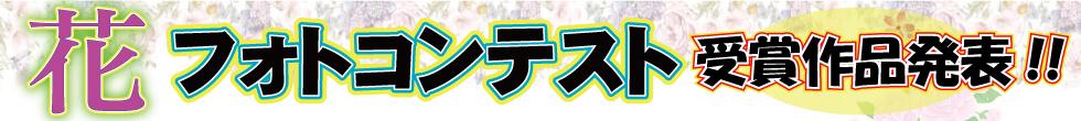 花フォトコンテスト募集要項はコチラ!!