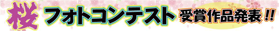 桜フォトコンテスト受賞作品はコチラ!!